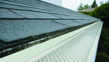 Why Do You Need Gutter Guards