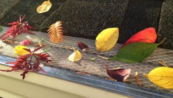 Leaf Filter vs Klean Gutter Guard